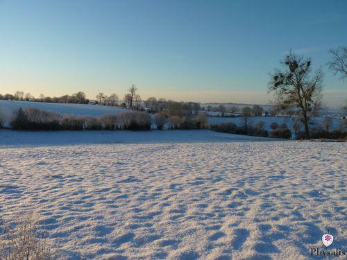 paysage neige 3