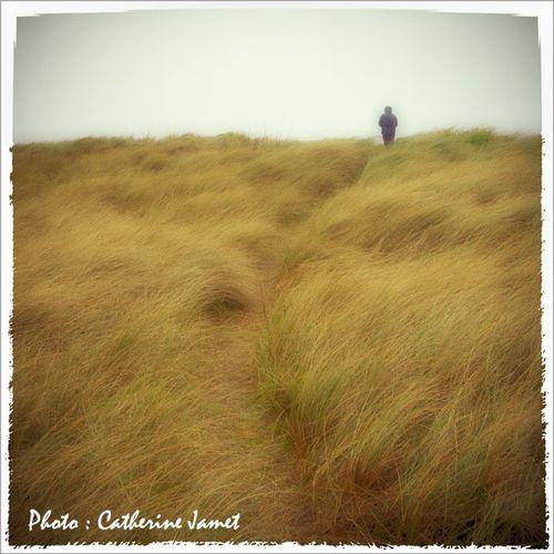 178 - Dans les dunes