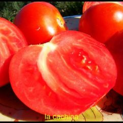 Office Chair Images Best Chairs For Nursery Uk Brouillade De Tomates (un Classique Provencal) - La Cachina