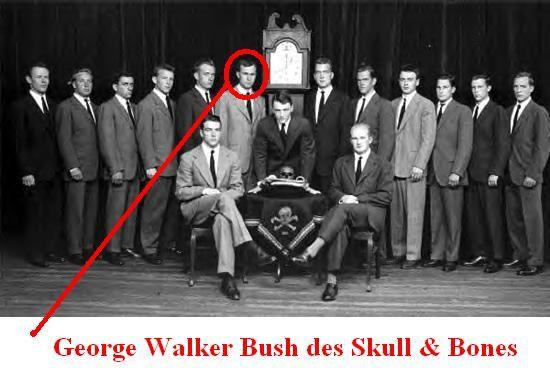 skull bones bush