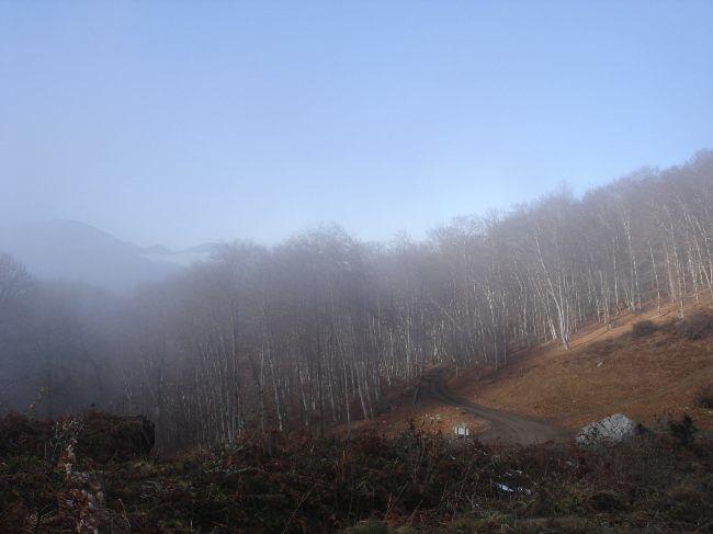 Vers le Pic du Gar : le col des Ares (797 m) 18