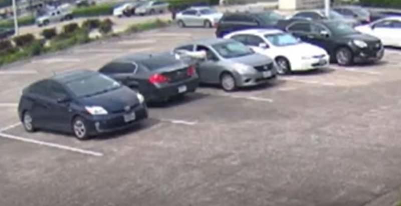 WATCH VIDEO: Woman targeted at bank as thief bashes her car window, steals purse from vehicle