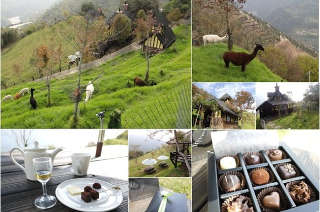 南投清境 貝卡巧克力莊園 人間仙境訪草泥馬~阿一一清境農場櫻花之旅