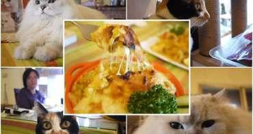 台北三芝 貓雜貨咖啡廳 二訪~饅頭家旦和焗烤