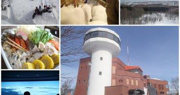 日本北海道 網走流冰館&溫暖海鮮石狩鍋~阿一一北海道冬季賞雪之旅