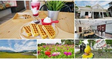 池上農會四季花海+小白屋咖啡下午茶~賞花海去工業風咖啡館吃鬆餅