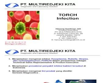 Presentasi TORCH
