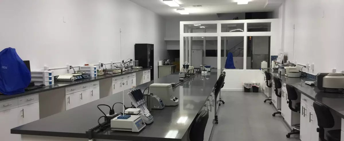 Modern Science Laboratory Active Working Lab With