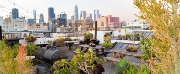 downtown la rooftop garden oasis