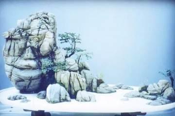 制作雪景盆景的立意與布置