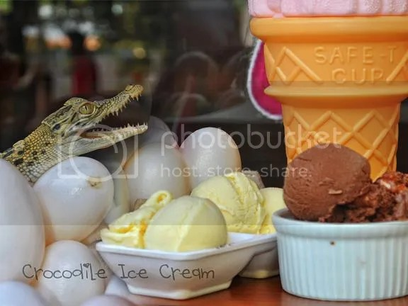 photo crocodileicecreamcover_zps114e2c14.jpg