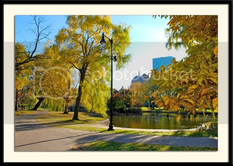 Boston Public Garden in the Fall