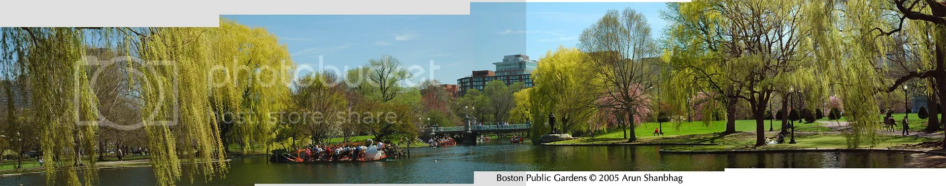 Boston Public Garden in the Spring pics by Arun Shanbhag