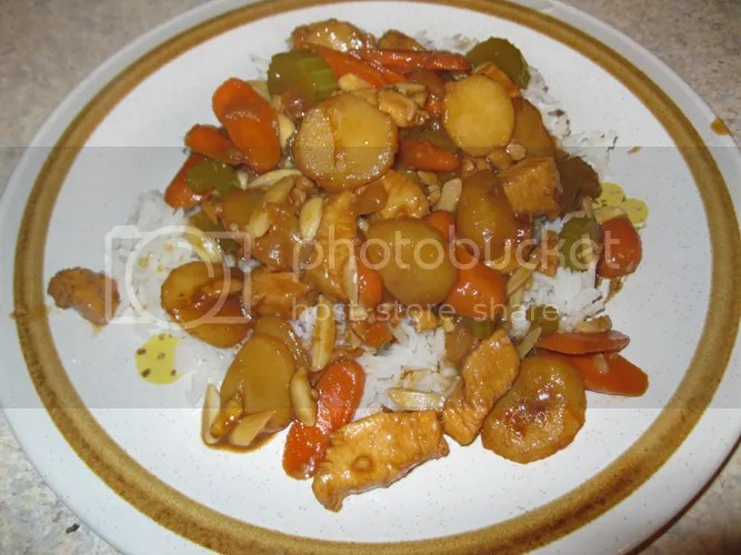 Plated Almond Chicken 2