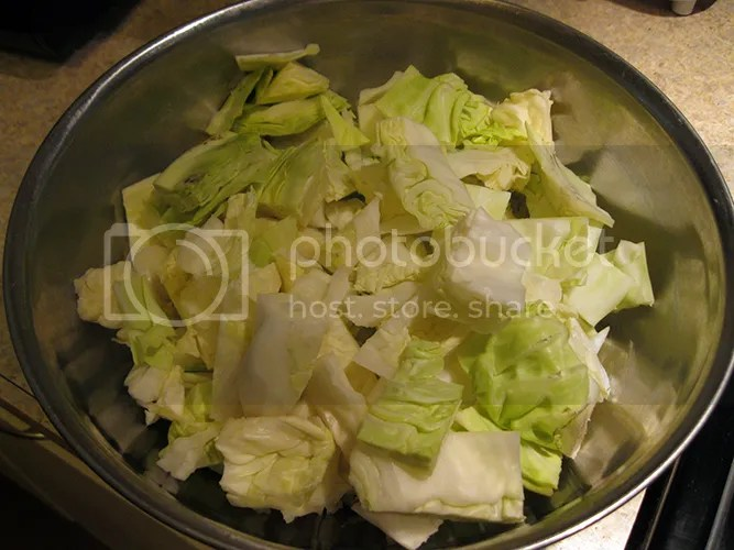Cut uncooked cabbage