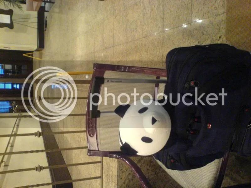 Panda-kun in a hotel. Ah! He's sideways neh?