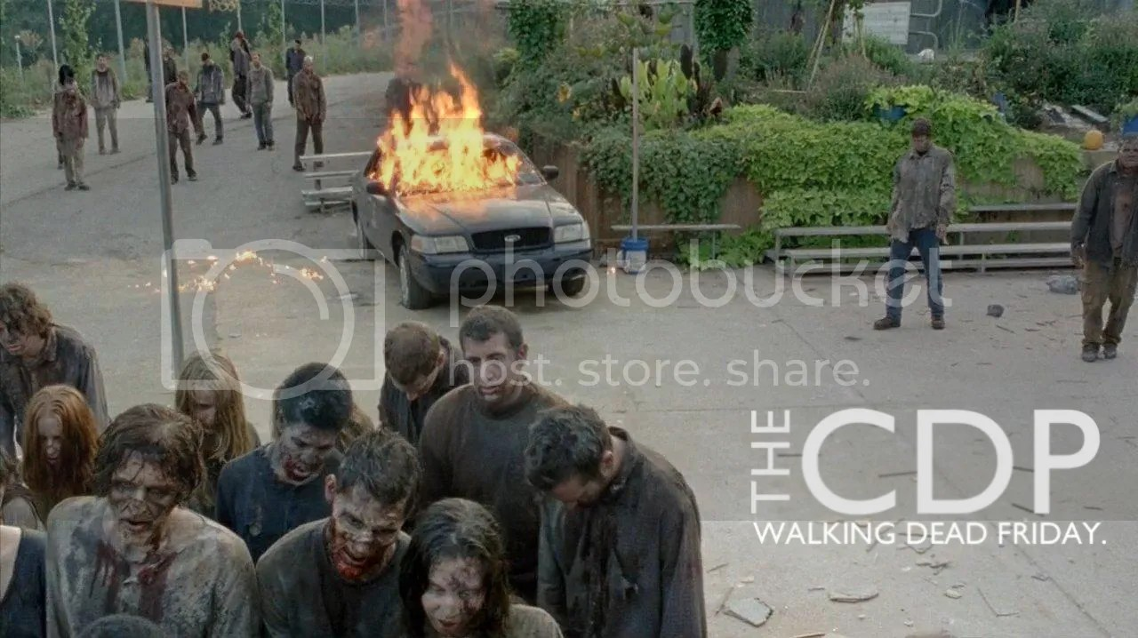 photo TWD0410LogoPic_zpsec904d33.jpg