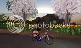 fietstulpen.jpg picture by Aragog
