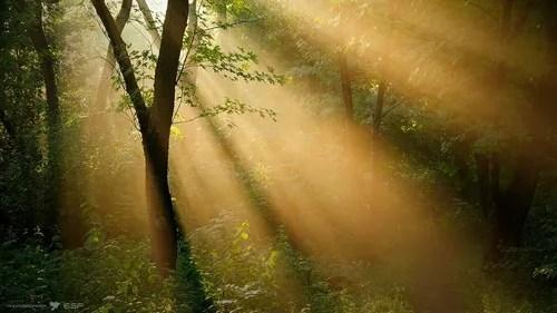 https://i0.wp.com/img.photobucket.com/albums/v20/Blackcat666x/IMVU/RS/mid_81646_5162_zps42b7a4a0.jpg
