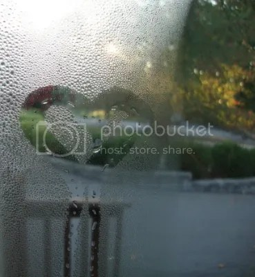 https://i0.wp.com/img.photobucket.com/albums/v20/Blackcat666x/IMVU/condensation_heart_by_ericdaneislovex3-d5fymyq_zpse4ee857d.jpg