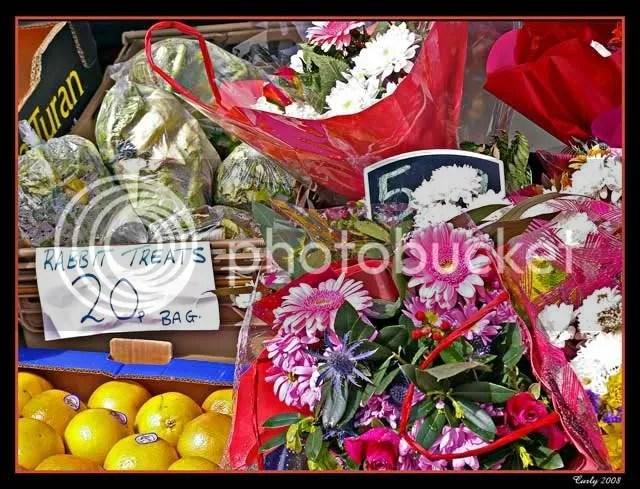 Shop, Harton Nook, South Shields