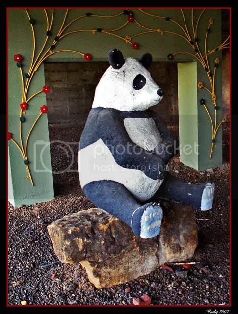 Model panda, Crossgate, South Shields