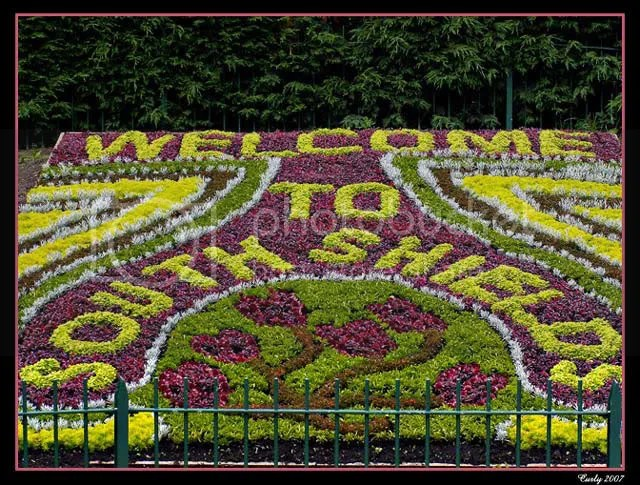 Floral display, North Marine Park, South Shields