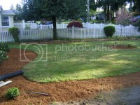Backyard Landscaping Along Fence PDF