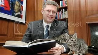 raindrops on roses and whiskers on kittens used for cheap political purposes