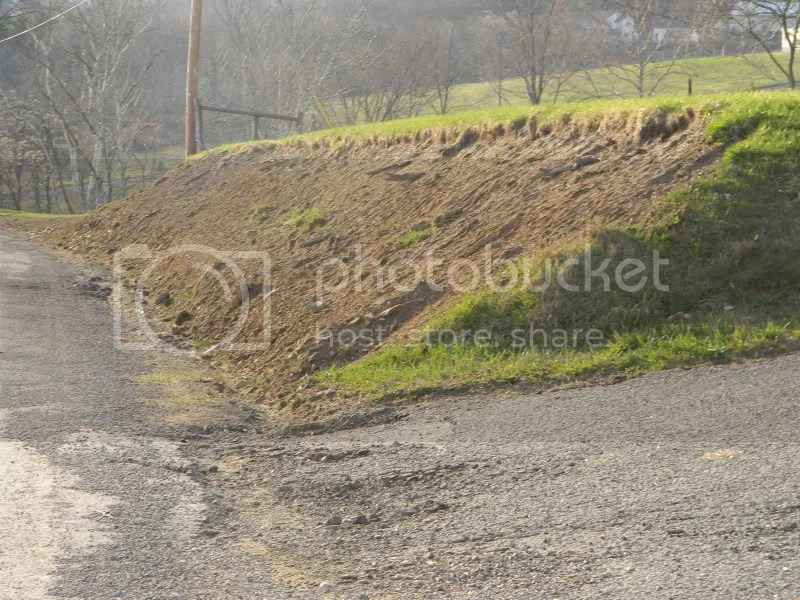 Ideas For Steep Slope