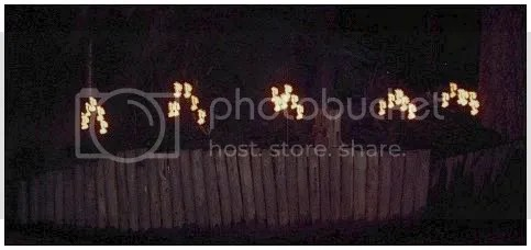 sterrenlichtstokken.jpg picture by corryjohan