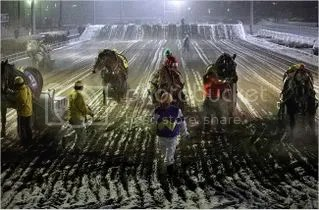 Draft-horse racing was officially established in 1946, and racetracks became self-contained worlds where stablemen and jockeys spent most of their lives.