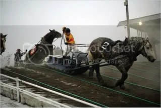The sport's popularity has declined over the years, and after incurring almost $34 million in debt, the four municipalities in charge of the racetracks announced that they would close them.