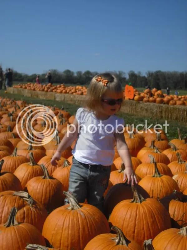 Hiding among the pumpkins