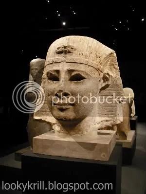 egyptian showcase,museum,sphynx head