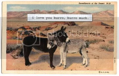 I love you burro, burro much