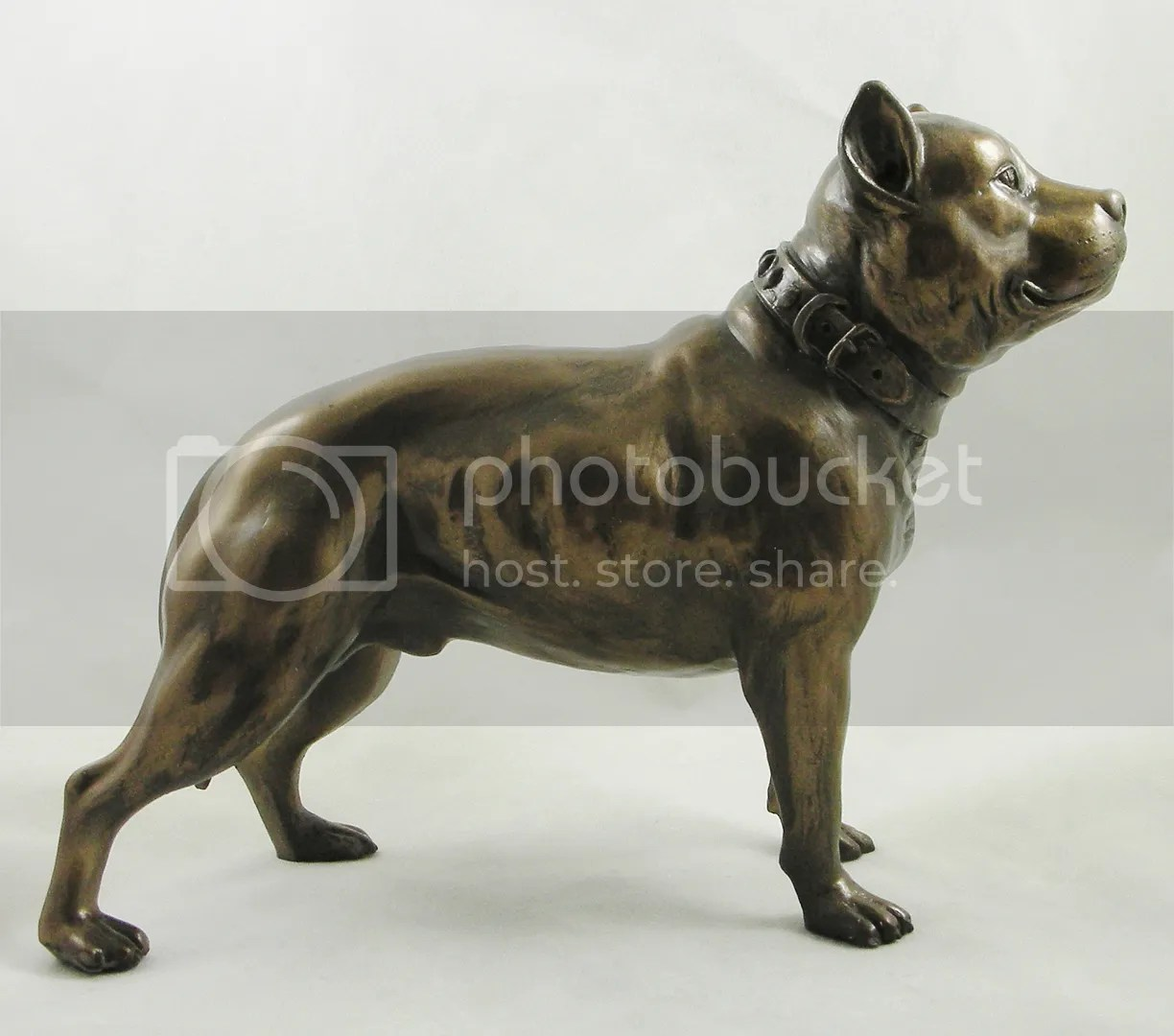 Male Staffordshire Pit Bull Terrier Figurine Bronzed