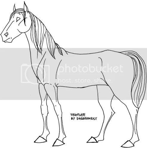 Related Keywords & Suggestions for horse template