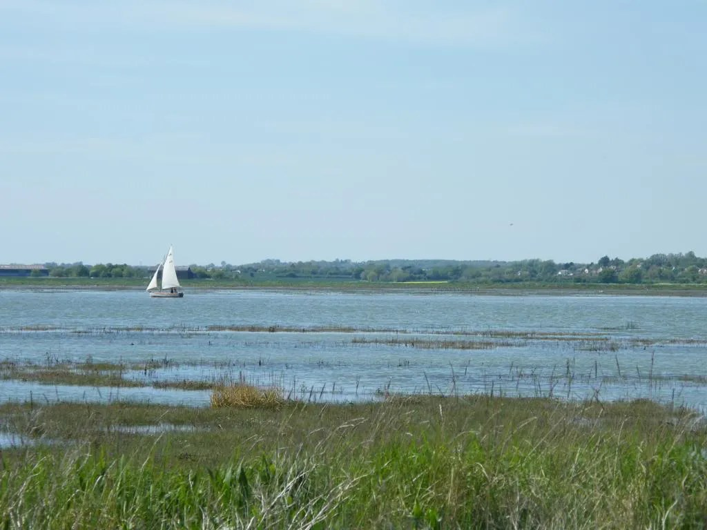 Marshland in the foreground, sea with a small sailing boat in the background