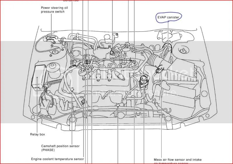 Nissan almera fuel filter location