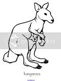 Kangaroos Theme Activities for Preschool PreK and Kindergarten