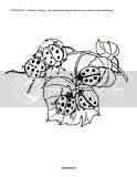 Ladybugs Theme Activities for Preschool PreK and Kindergarten