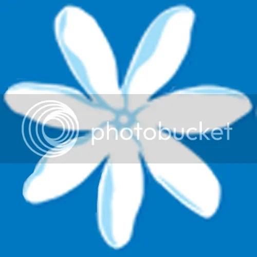 photo Logo_Air-Tahiti-Nui_dian-hasan-branding_TA-4_zps566a32c1.png
