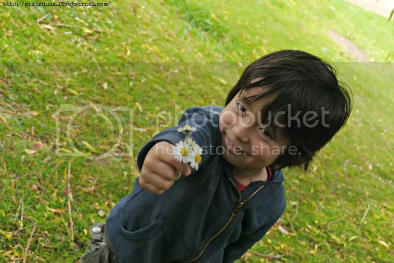 Image result for little boy and big garden