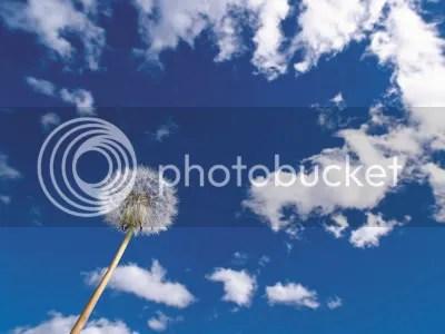 Ceu1800.jpg Hoje o céu está mais azul image by mente_assumida
