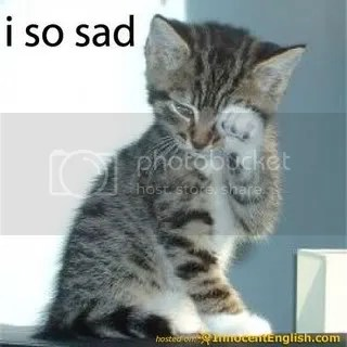 cute-kitten-crying.jpg image by cari