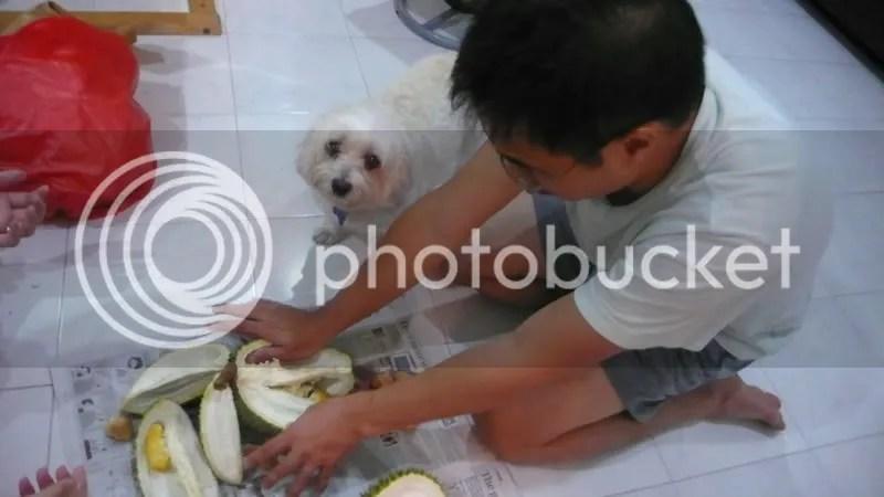 Boy Opening Durian