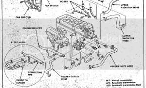 1996 Acura Integra Cooling System Diagram  Wiring Diagram
