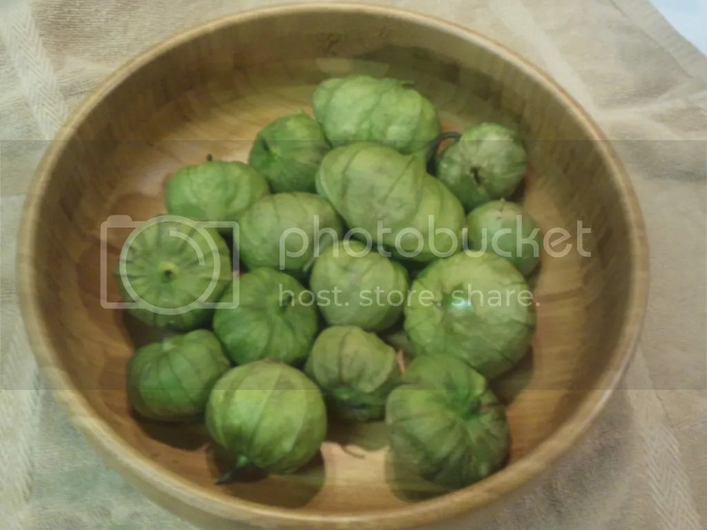 Approximately three pounds of tomatillos
