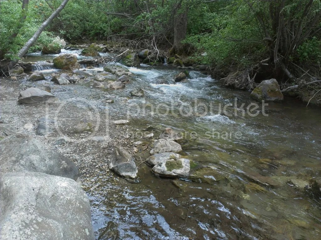 Water flowing through Little Cottonwood Canyon